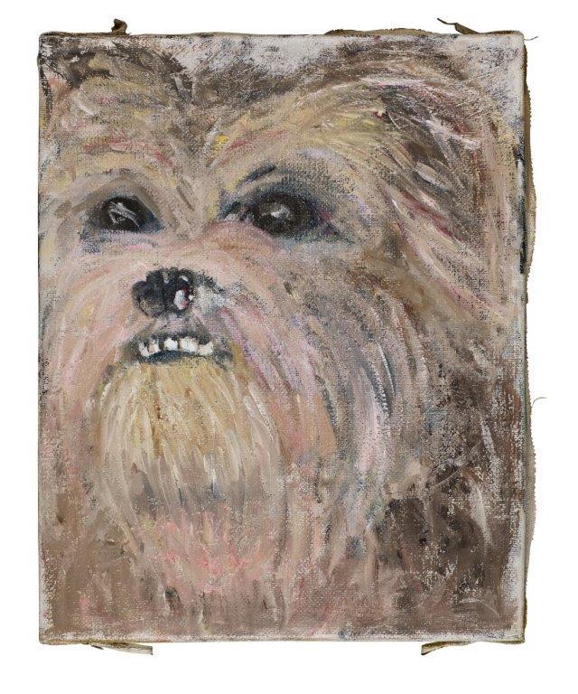 Lieke Tripaldelli - portretten - Dog